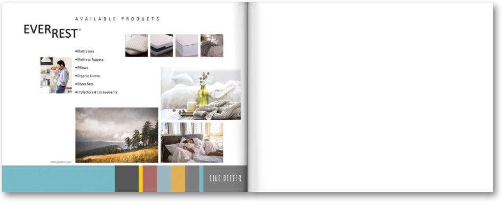 Brochure Design - Brochure Spread - Brand Awareness Brochure  - Award Winner - American Advertising Awards 2021 - Studio 101 West Marketing & Graphic Design
